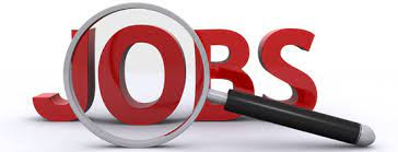 Latest  jobs at VSO (various locations)